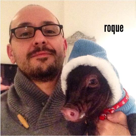 Entrevista al blog Roque Minipig